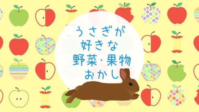 うさぎがすきなやさいフルーツおかし うさぎとりんごのyellouwバックのイラスト